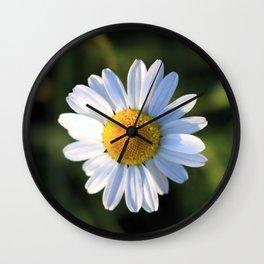 Chamomile flower Wall Clock