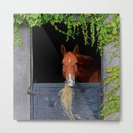 Home is where the Horse is Metal Print