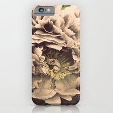 Old Slim Case iPhone 6s