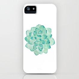 Watercolor Succulent print in seafoam green iPhone Case