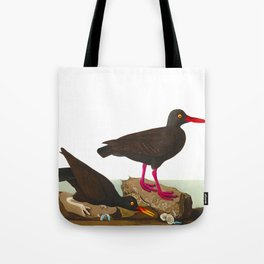 White-legged Oyster-catcher, or Slender-billed Oyster-catcher Bird Tote Bag