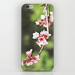 Whisp of Spring iPhone Skin