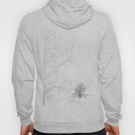 Sycamore Tree Hoody