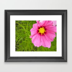 Bright Pink Flower Framed Art Print