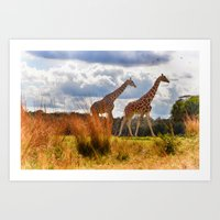 giraffes Art Prints featuring Giraffes by Photography by Terrance