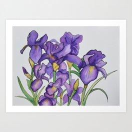 Pretty Purple Petals Art Print