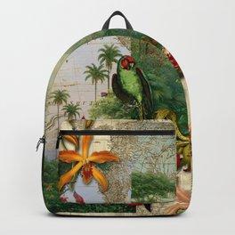 America do Sul Backpack