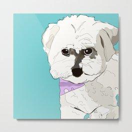 Cute poodle Metal Print