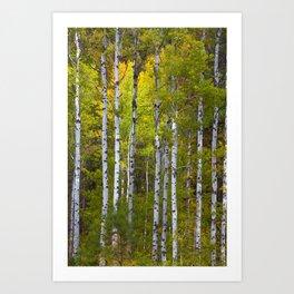 Aspen Tree Wall Art, Aspen Tree Decor, Birch Tree Art, Aspen Art, Metal Aspen Tree Wall Art, Art Print