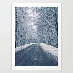 DRIVE - WAY - SNOW - PHOTOGRAPHY Art Print