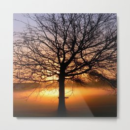 Louisiana Sunrise Metal Print