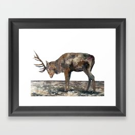 Deer #1 Framed Art Print