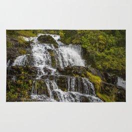 Cascada Del Toro Rug