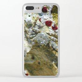A crab in Punta Canta Dominican Republic Clear iPhone Case