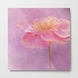 Romantic Flower Metal Print