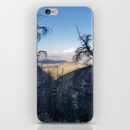 Ancient Bristlecone Pine Forest #1 iPhone Skin