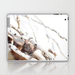 Drifted Palm Laptop & iPad Skin
