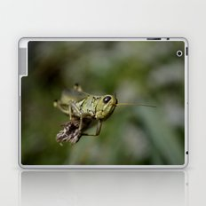 Grasshopper close up Laptop & iPad Skin