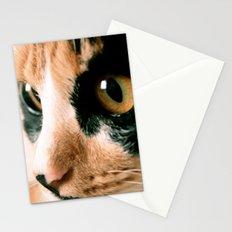 Thinking Cat Stationery Cards