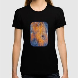 Eye of The Barn 2 T-shirt