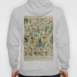 Adolphe Millot- Vintage Flowers Print Hoody