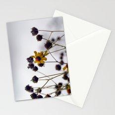 Backyard Beauty - Strough Canyon Park 001 Stationery Cards