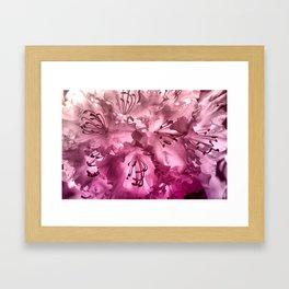 Alegría Framed Art Print