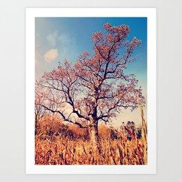Cornfield Tree Art Print