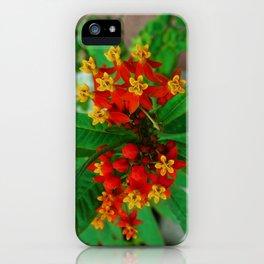 Orange and Yellow Flowers iPhone Case