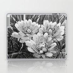 Cactus flower B&W Laptop & iPad Skin