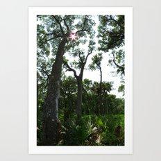 Vertical Panorama  Art Print