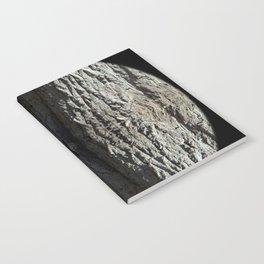 Oak Tree Bark Vertical Pattern by Debra Cortese Designs Notebook