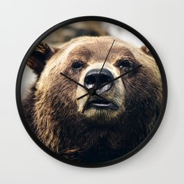 Grizzly Bear Wall Clock