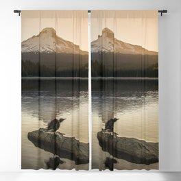 The Oregon Duck II - The Shake Blackout Curtain