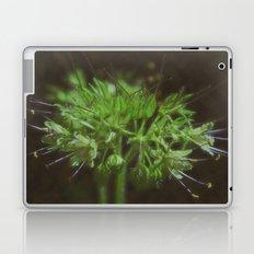 spindles Laptop & iPad Skin