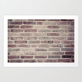 Wall built with bricks of various earth tones Art Print