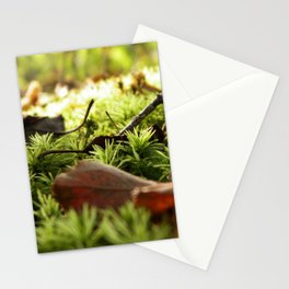 Moss with Twigs Stationery Cards