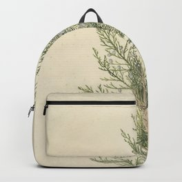 Vintage Botanical Juniper Branch Backpack