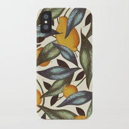 Lemons, Oranges & Pears iPhone Case