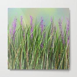 Lavenders Metal Print