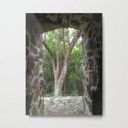 Window to the Woods, St. John, Virgin Islands, Sugar Mill Stone Ruins,  Metal Print