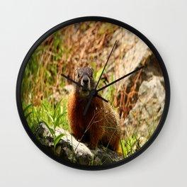 Marmot On A Rock Wall Clock