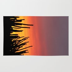 Catching fire Rug