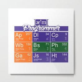 ae'm Programmer Metal Print
