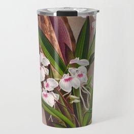 Ionopsis Paniculata Vintage Little White Orchids Travel Mug