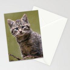 Scottish Wildcat Kitten Stationery Cards