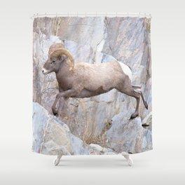 Watercolor Bighorn Ram 49 Shower Curtain