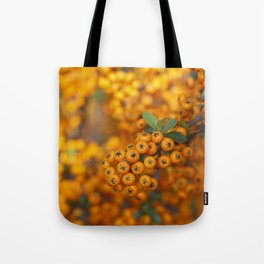 Fall berries in orange Tote Bag
