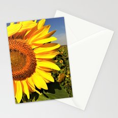 Sunflower fields forever Stationery Cards