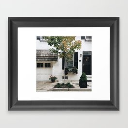 City Tree, Philadelphia Framed Art Print